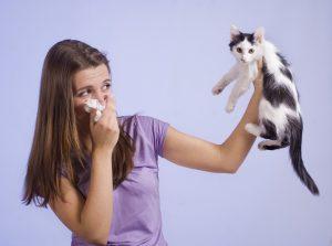 Afbeelding behorende bij de pagina allergie waalwijk van de website van hypnotherapie waalwijk